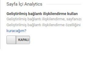Google Analytics Kitle Raporu