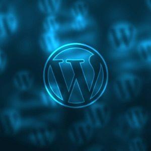 Wordpress Tema Nasıl Çalışır?