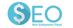 SEO Çalışması Yapılan Sitenin Temasının Önemi